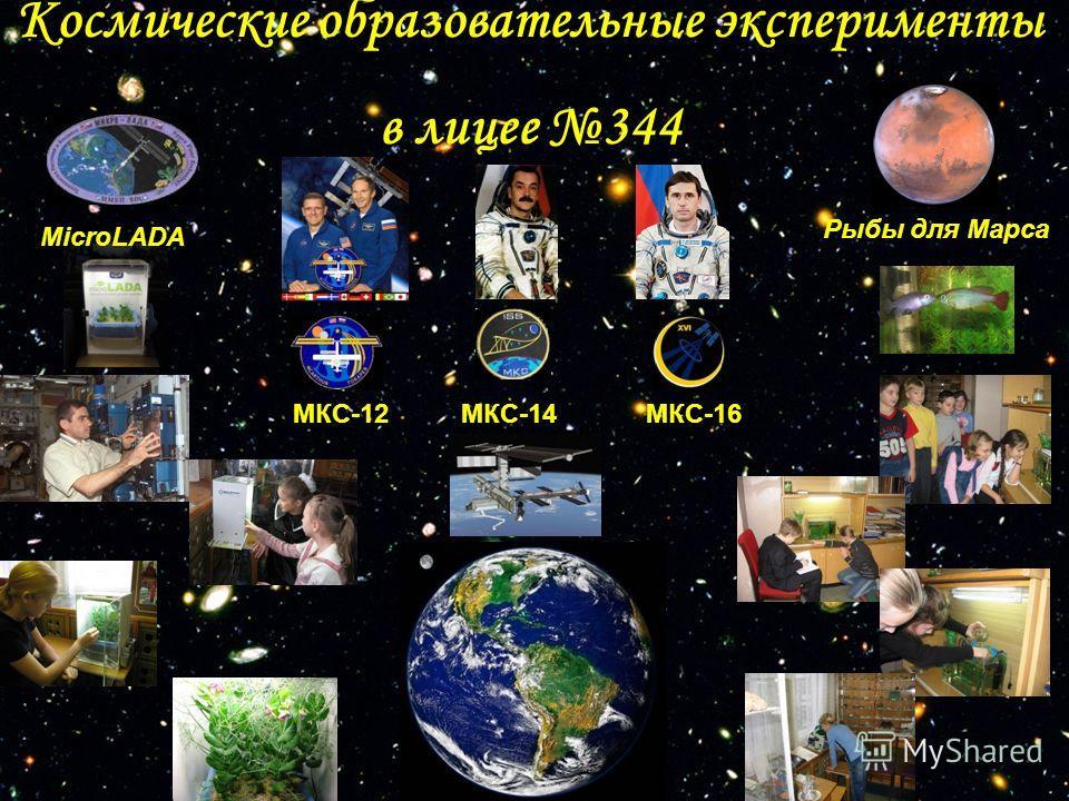 Космические образовательные эксперименты в лицее 344 MicroLADA Рыбы для Марса МКС-12МКС-14МКС-16