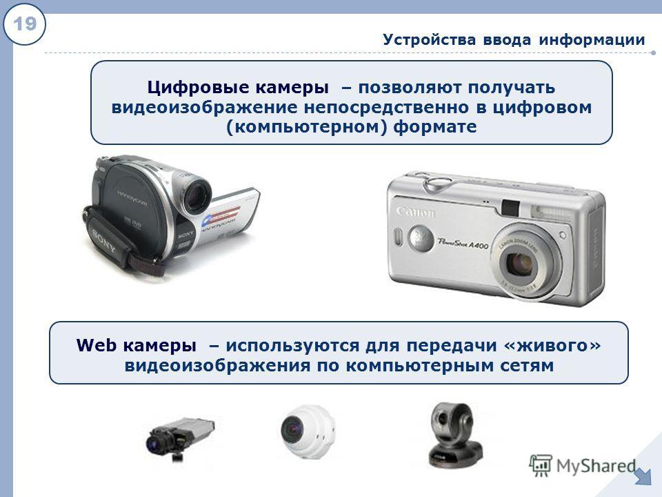 19 Устройства ввода информации Цифровые камеры – позволяют получать видеоизображение непосредственно в цифровом (компьютерном) формате Web камеры – используются для передачи «живого» видеоизображения по компьютерным сетям