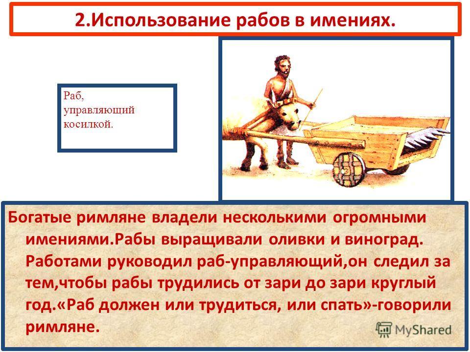 2.Использование рабов в имениях. Богатые римляне владели несколькими огромными имениями.Рабы выращивали оливки и виноград. Работами руководил раб-управляющий,он следил за тем,чтобы рабы трудились от зари до зари круглый год.«Раб должен или трудиться,