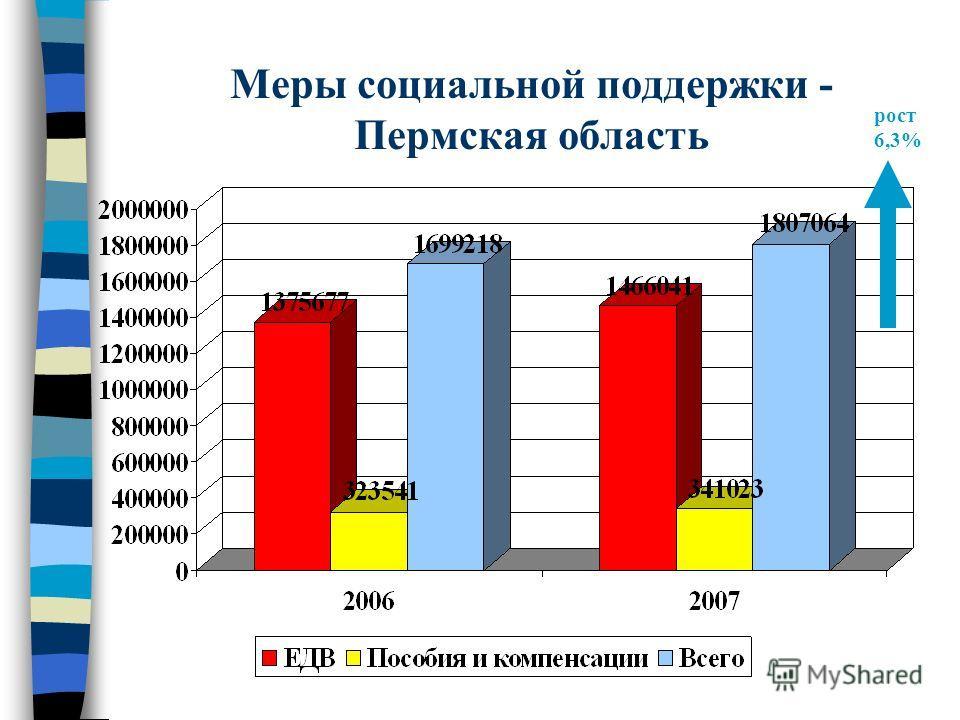 Меры социальной поддержки - Пермская область рост 6,3%