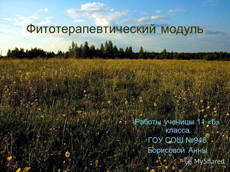 Фитотерапевтический модуль Работы ученицы 11 «б» класса ГОУ СОШ 948 Борисовой Анны