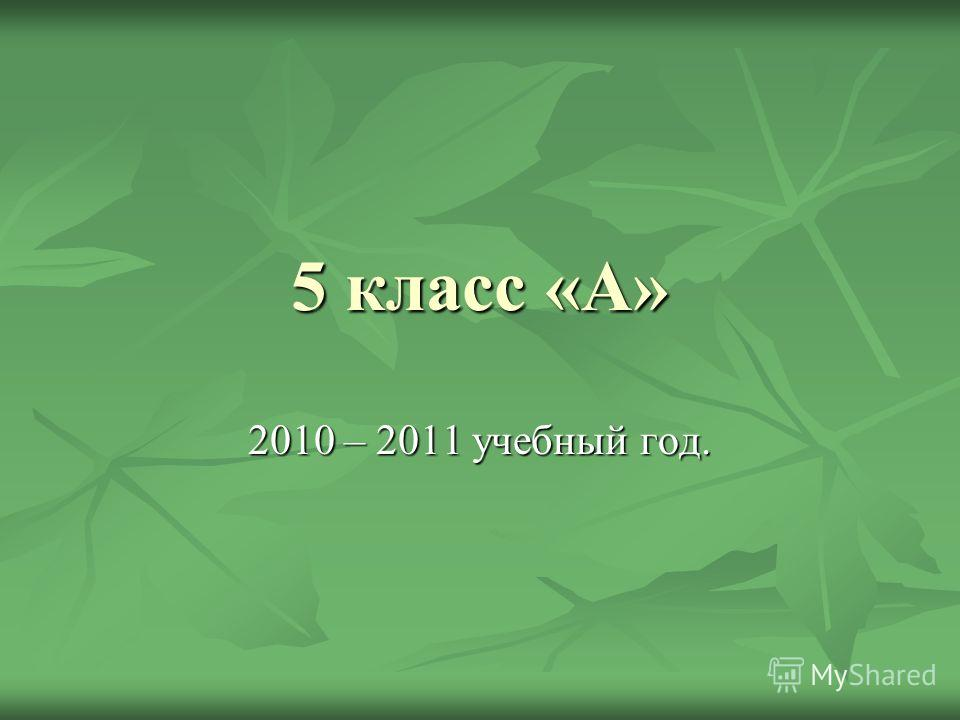 5 класс «А» 2010 – 2011 учебный год.