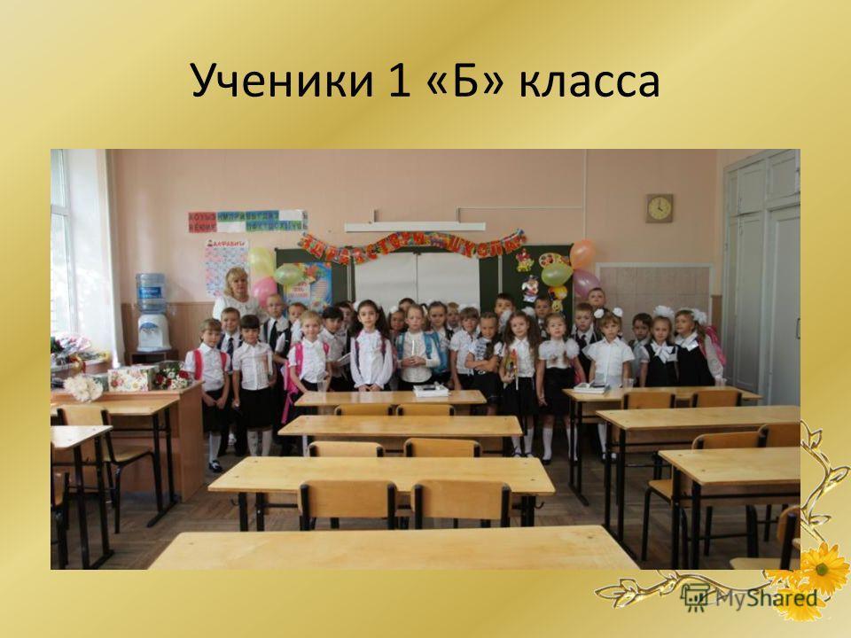 Ученики 1 «Б» класса