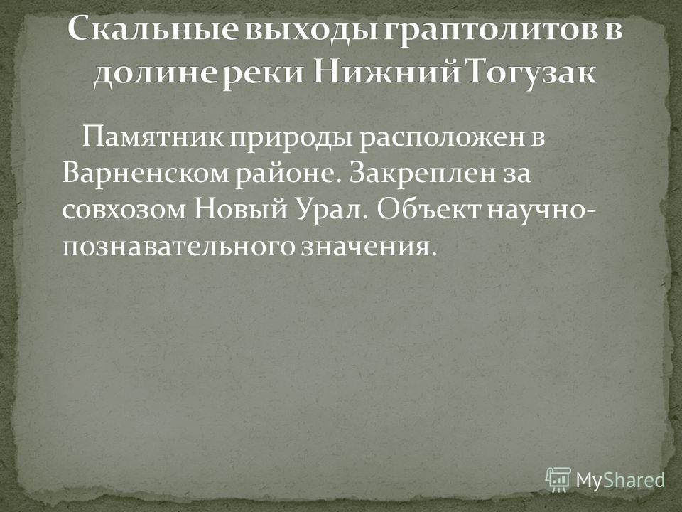 Памятник природы расположен в Варненском районе. Закреплен за совхозом Новый Урал. Объект научно- познавательного значения.