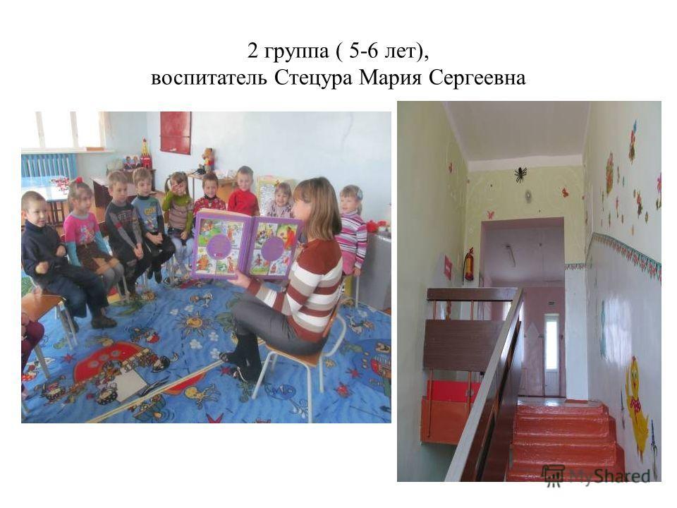 2 группа ( 5-6 лет), воспитатель Стецура Мария Сергеевна