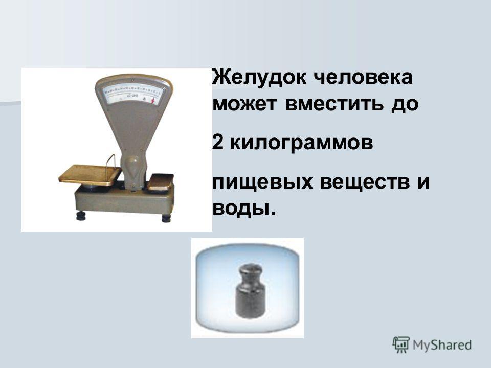 Желудок человека может вместить до 2 килограммов пищевых веществ и воды.