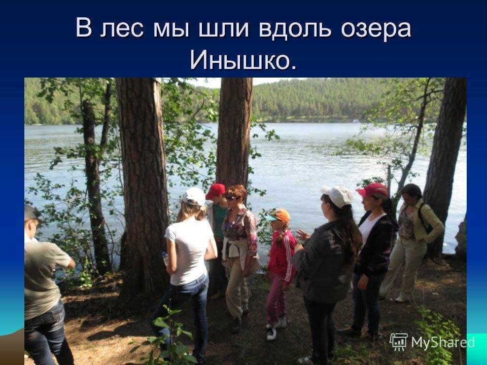 В лес мы шли вдоль озера Инышко.