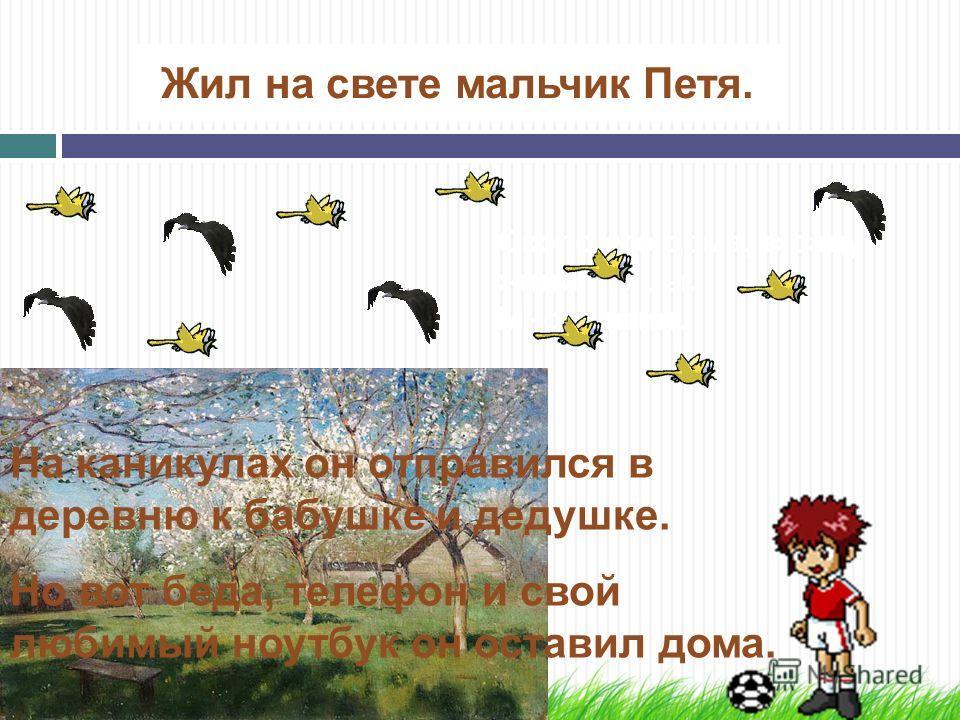 Жил на свете мальчик Петя. Около его дома, в саду жили птицы. Много птиц. На каникулах он отправился в деревню к бабушке и дедушке. Но вот беда, телефон и свой любимый ноутбук он оставил дома.