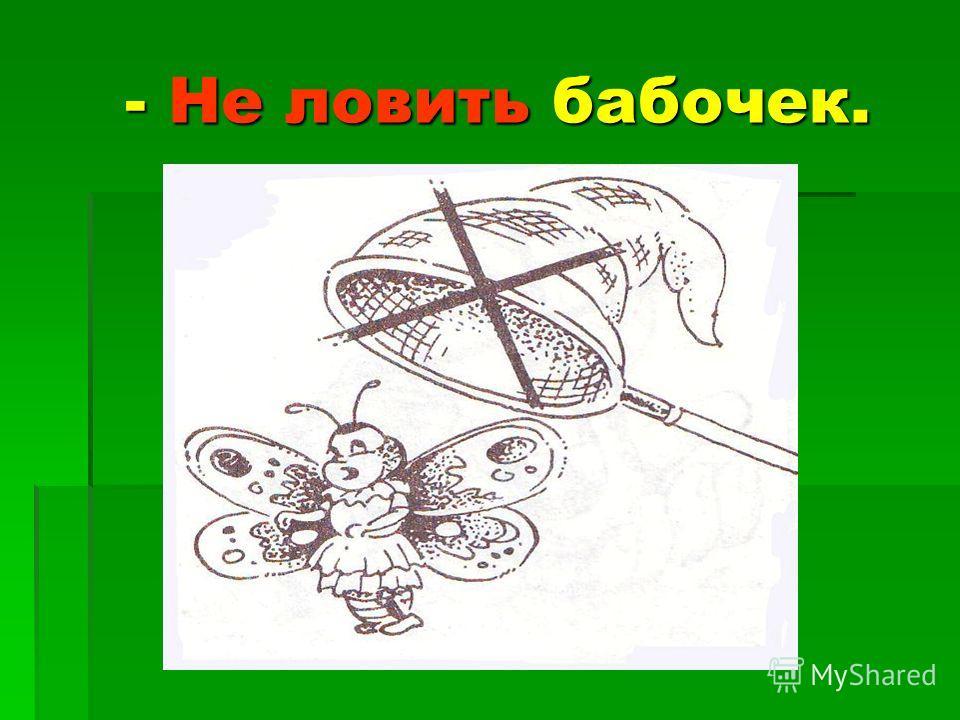 - Не ловить бабочек. - Не ловить бабочек.