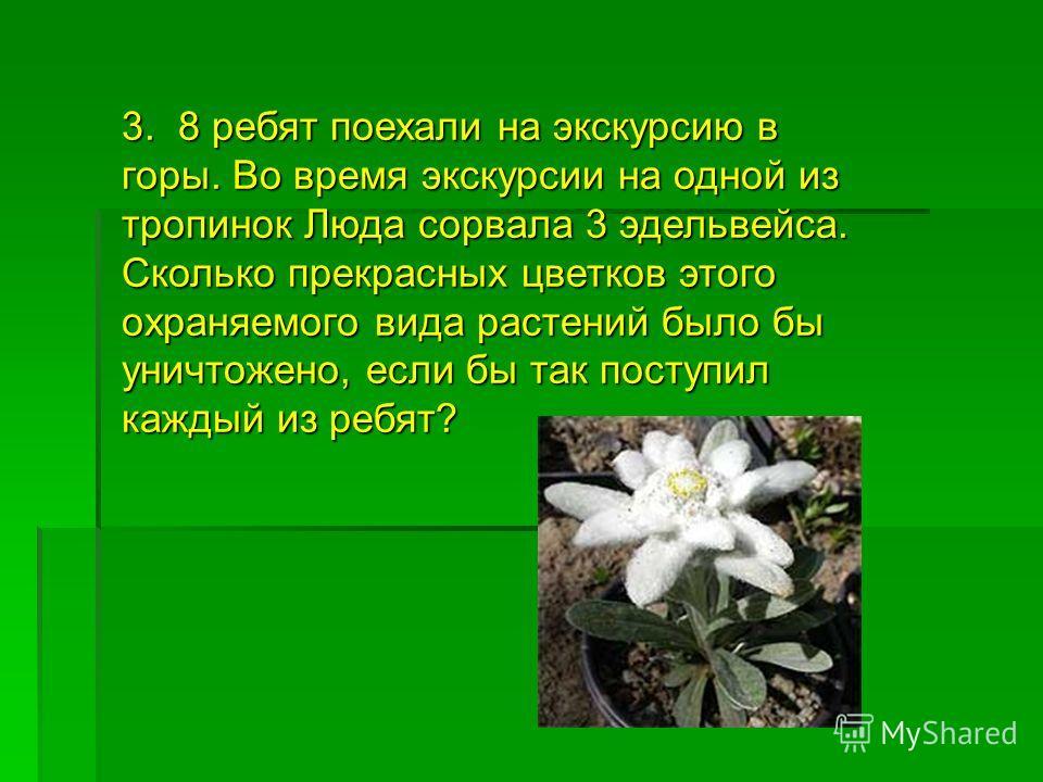 3. 8 ребят поехали на экскурсию в горы. Во время экскурсии на одной из тропинок Люда сорвала 3 эдельвейса. Сколько прекрасных цветков этого охраняемого вида растений было бы уничтожено, если бы так поступил каждый из ребят?