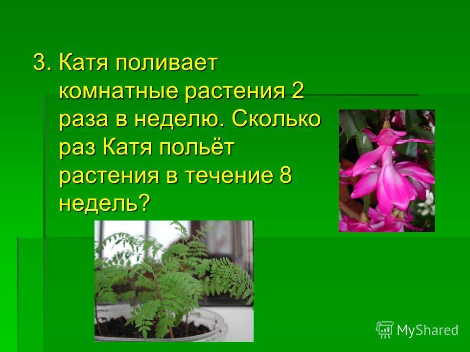 3. Катя поливает комнатные растения 2 комнатные растения 2 раза в неделю. Сколько раза в неделю. Сколько раз Катя польёт раз Катя польёт растения в течение 8 растения в течение 8 недель? недель?