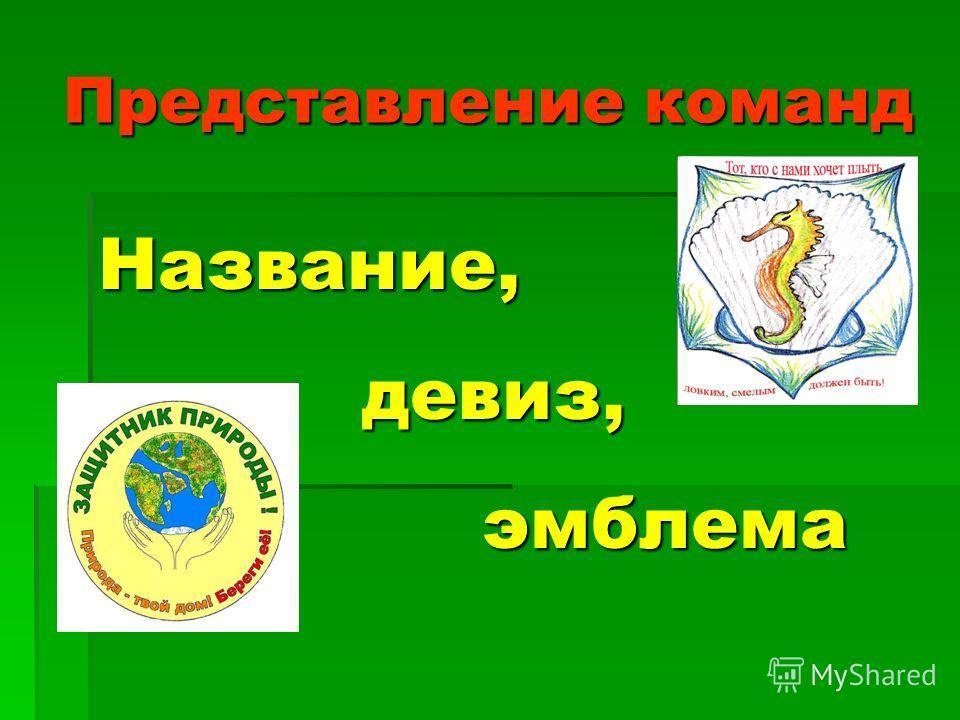 Представление команд Название, девиз, девиз, эмблема эмблема