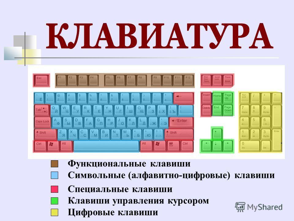 Функциональные клавиши Символьные (алфавитно-цифровые) клавиши Специальные клавиши Клавиши управления курсором Цифровые клавиши