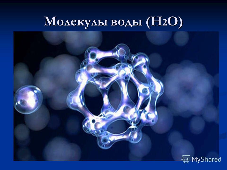 Молекулы воды (Н 2 О)