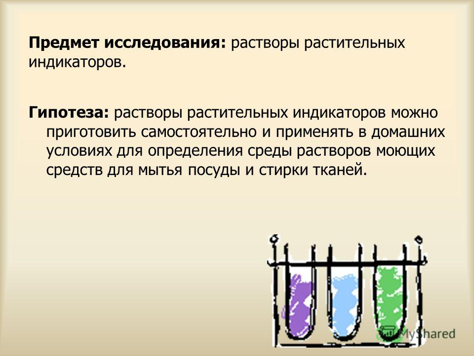 Предмет исследования: растворы растительных индикаторов. Гипотеза: растворы растительных индикаторов можно приготовить самостоятельно и применять в домашних условиях для определения среды растворов моющих средств для мытья посуды и стирки тканей.