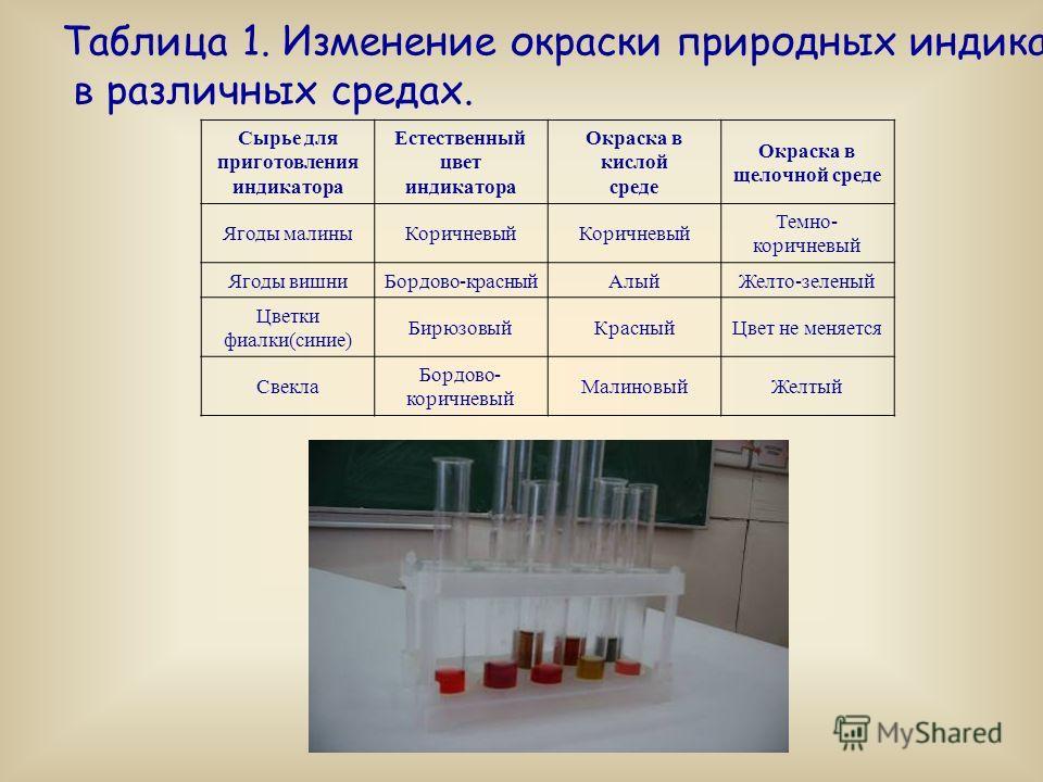 Таблица 1. Изменение окраски природных индикаторов в различных средах. Сырье для приготовления индикатора Естественный цвет индикатора Окраска в кислой среде Окраска в щелочной среде Ягоды малиныКоричневый Темно- коричневый Ягоды вишниБордово-красный