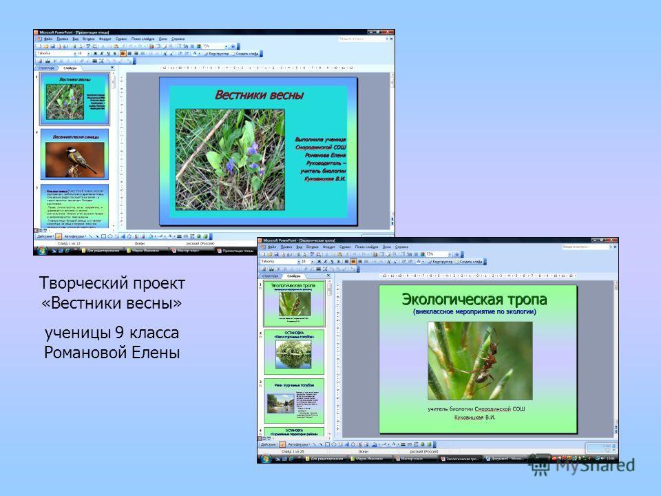 Творческий проект «Вестники весны» ученицы 9 класса Романовой Елены