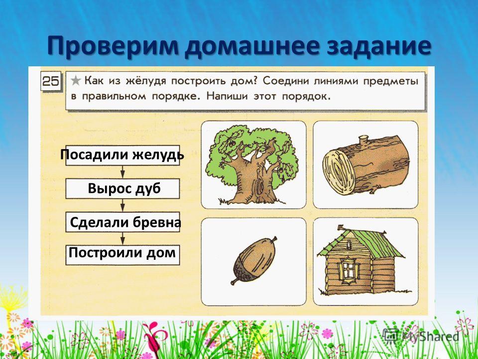 Проверим домашнее задание Посадили желудь Вырос дуб Сделали бревна Построили дом