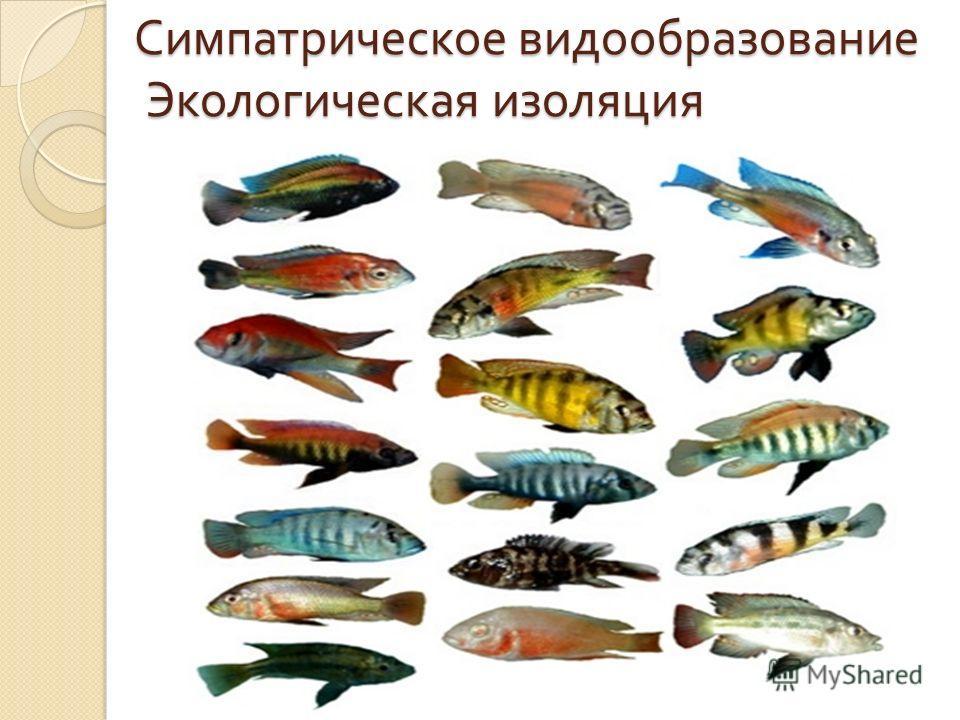 17 Озеро Байкал