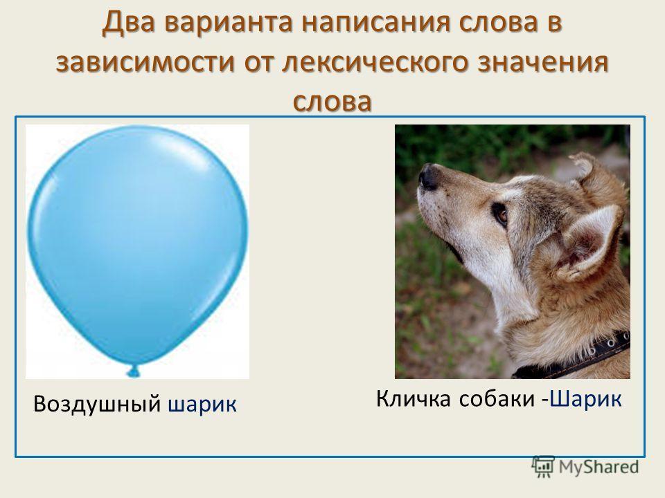 Два варианта написания слова в зависимости от лексического значения слова Воздушный шарик Кличка собаки -Шарик