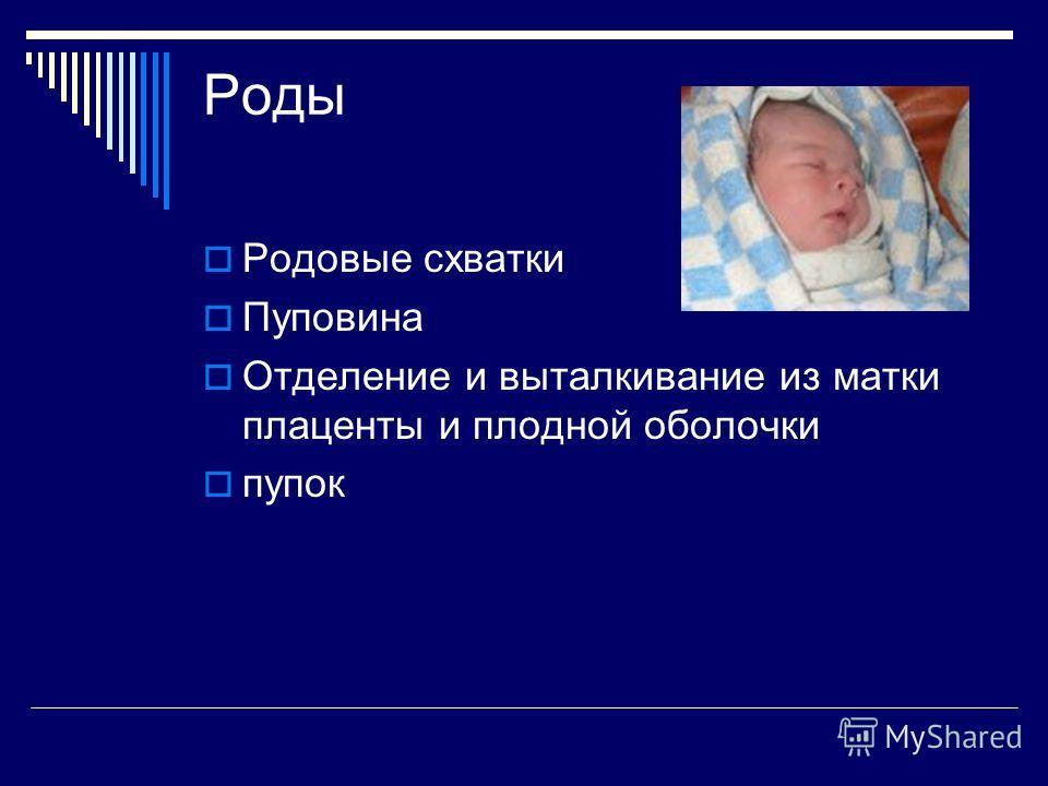 Роды Родовые схватки Пуповина Отделение и выталкивание из матки плаценты и плодной оболочки пупок