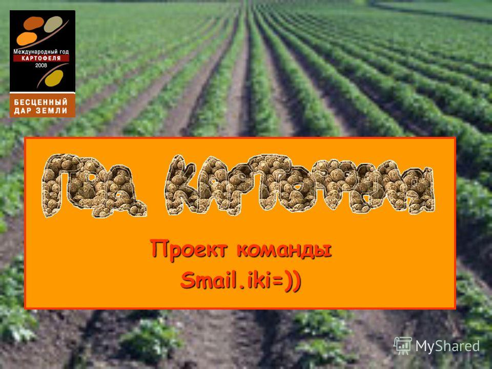 Проект команды Smail.iki=))