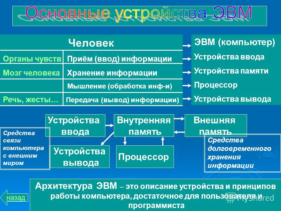 Человек Органы чувств Приём (ввод) информации Мозг человека Хранение информации Мышление (обработка инф-и) Речь, жесты… Передача (вывод) информации) ЭВМ (компьютер) Устройства ввода Устройства памяти Процессор Устройства вывода Устройства ввода Внутр