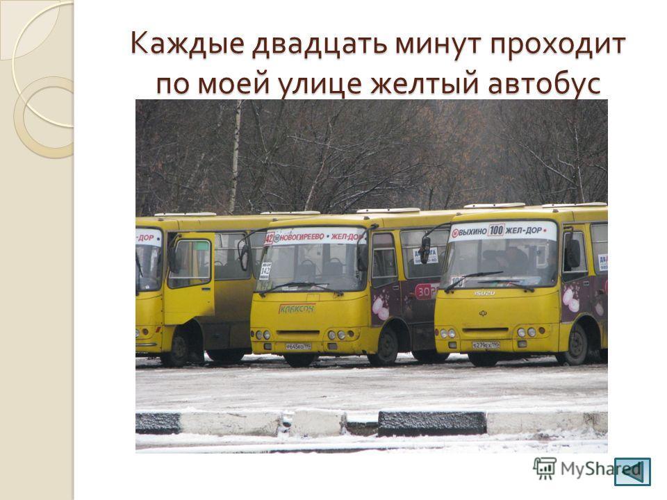 Каждые двадцать минут проходит по моей улице желтый автобус