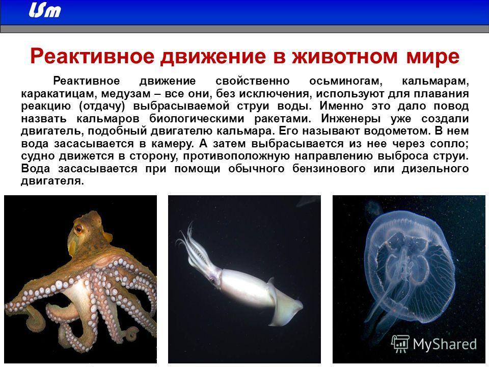 Россия 12 апреля отмечает День космонавтики. В этот день в 1961 году на корабле