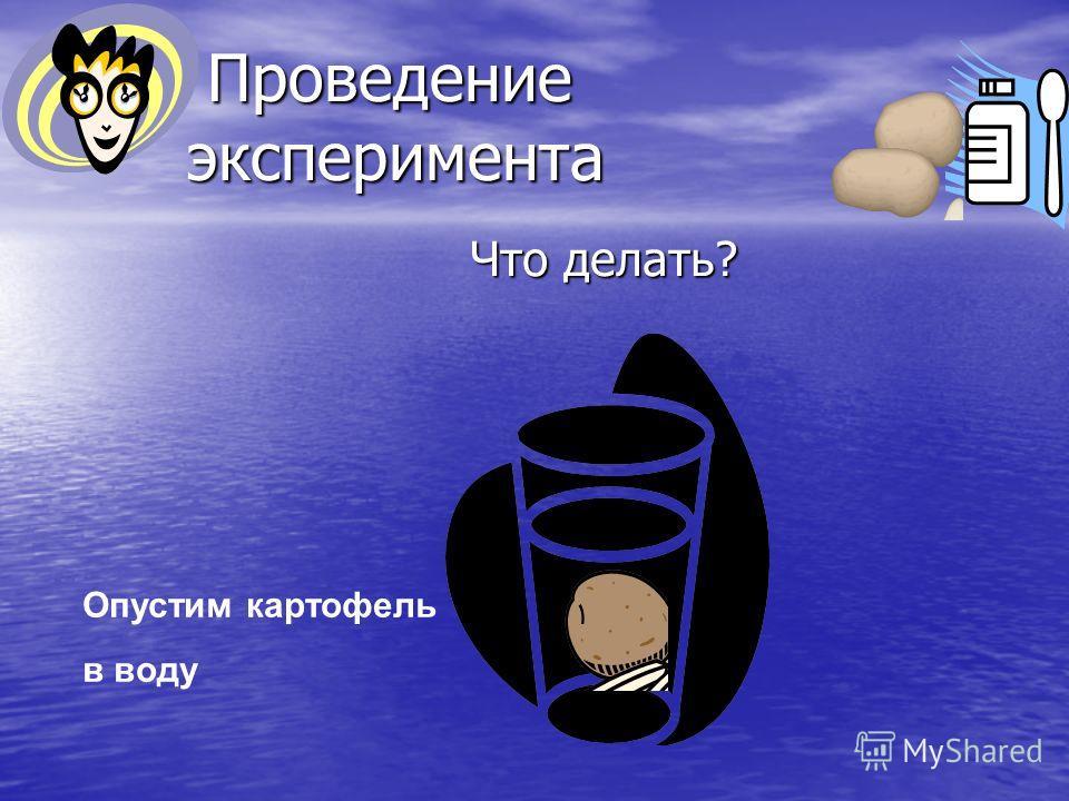 Проведение эксперимента Проведение эксперимента Что делать? Что делать? Опустим картофель в воду