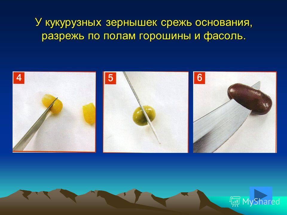 У кукурузных зернышек срежь основания, разрежь по полам горошины и фасоль.