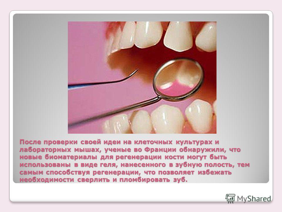 После проверки своей идеи на клеточных культурах и лабораторных мышах, ученые во Франции обнаружили, что новые биоматериалы для регенерации кости могут быть использованы в виде геля, нанесенного в зубную полость, тем самым способствуя регенерации, чт
