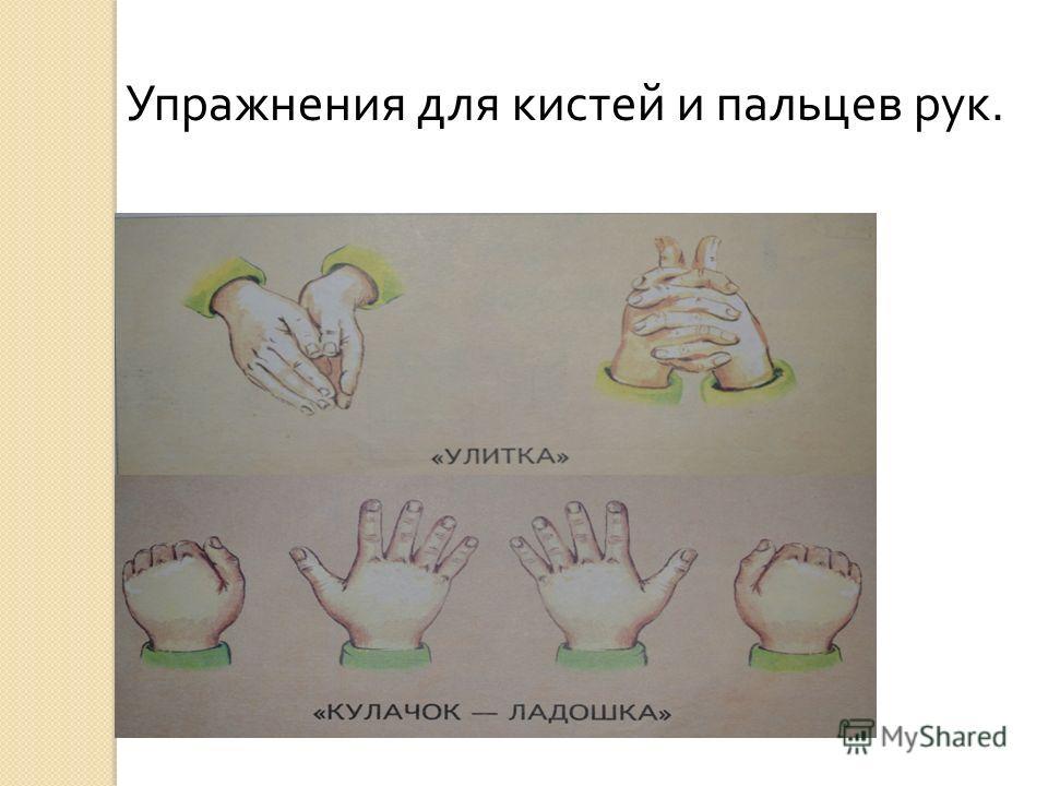 Упражнения для кистей и пальцев рук.
