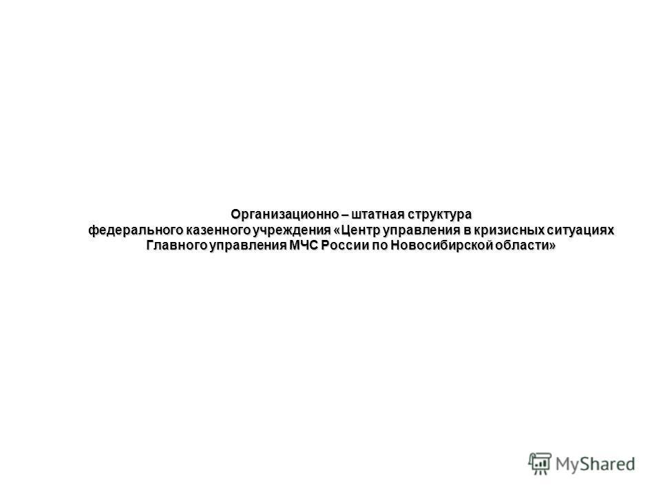 Организационно – штатная структура федерального казенного учреждения «Центр управления в кризисных ситуациях Главного управления МЧС России по Новосибирской области»