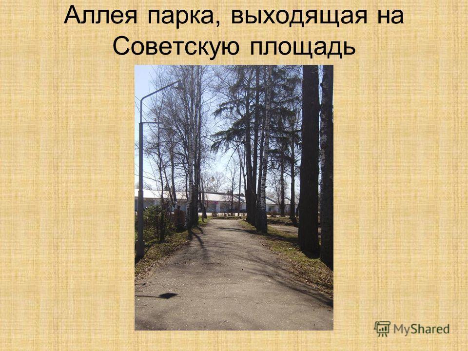 Аллея парка, выходящая на Советскую площадь