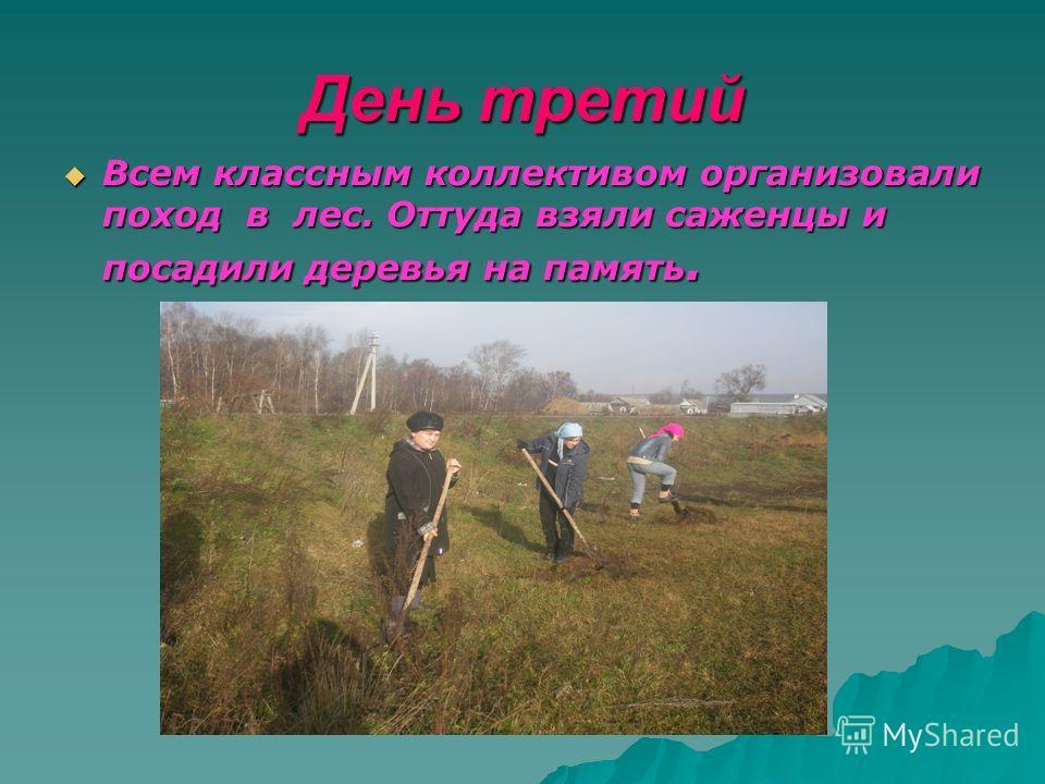 День третий Всем классным коллективом организовали поход в лес. Оттуда взяли саженцы и посадили деревья на память. Всем классным коллективом организовали поход в лес. Оттуда взяли саженцы и посадили деревья на память.