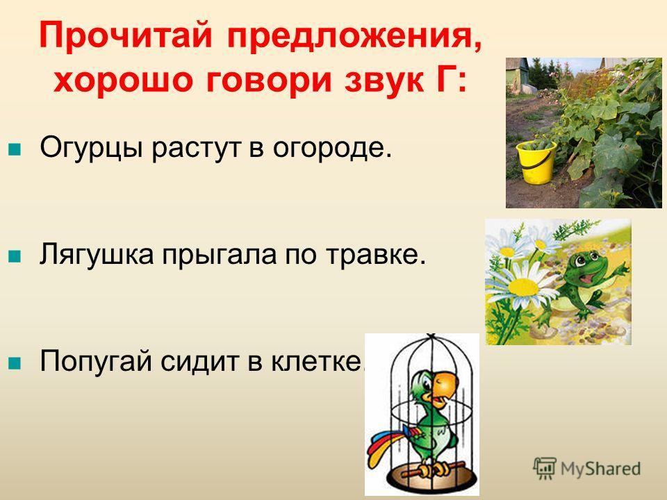Прочитай предложения, хорошо говори звук Г: Огурцы растут в огороде. Лягушка прыгала по травке. Попугай сидит в клетке.