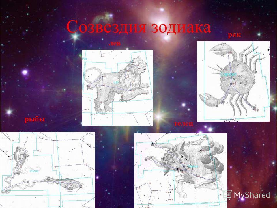 Созвездия зодиака рыбы телец лев рак