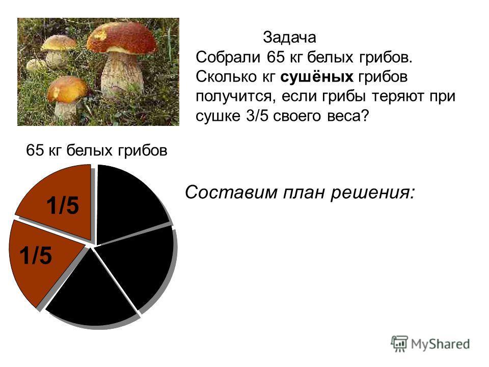 65 кг белых грибов 1/5 Составим план решения: