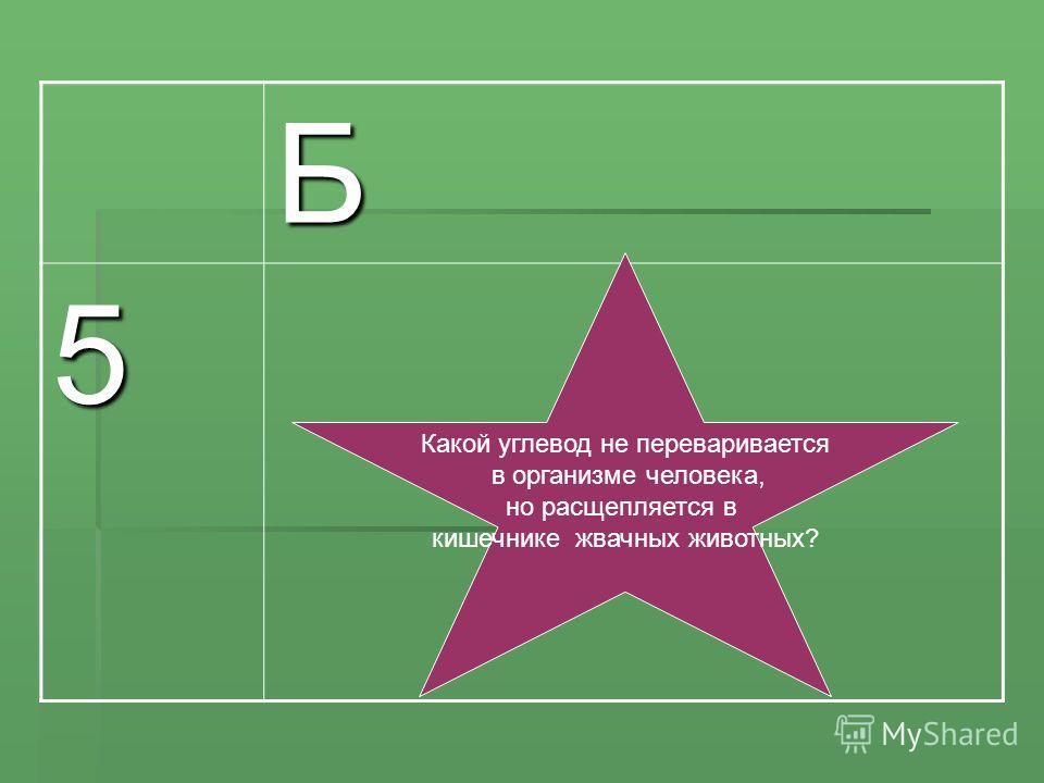 Б 5, Какой углевод не переваривается в организме человека, но расщепляется в кишечнике жвачных животных?