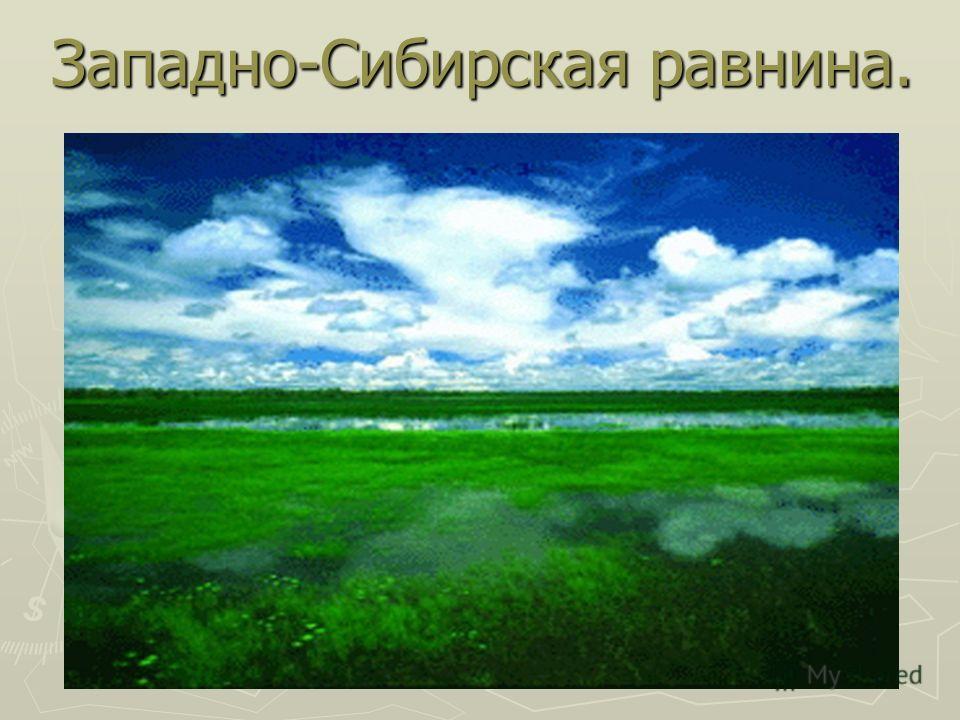 Западно-Сибирская равнина.