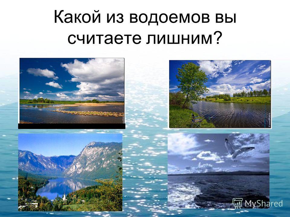 Какой из водоемов вы считаете лишним?