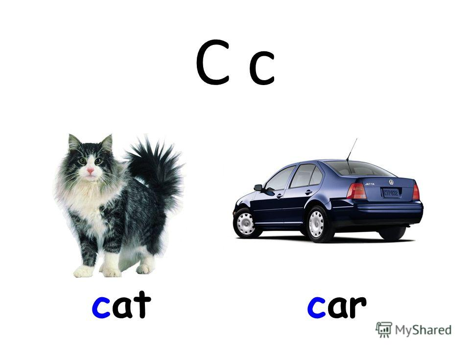 C c catcar