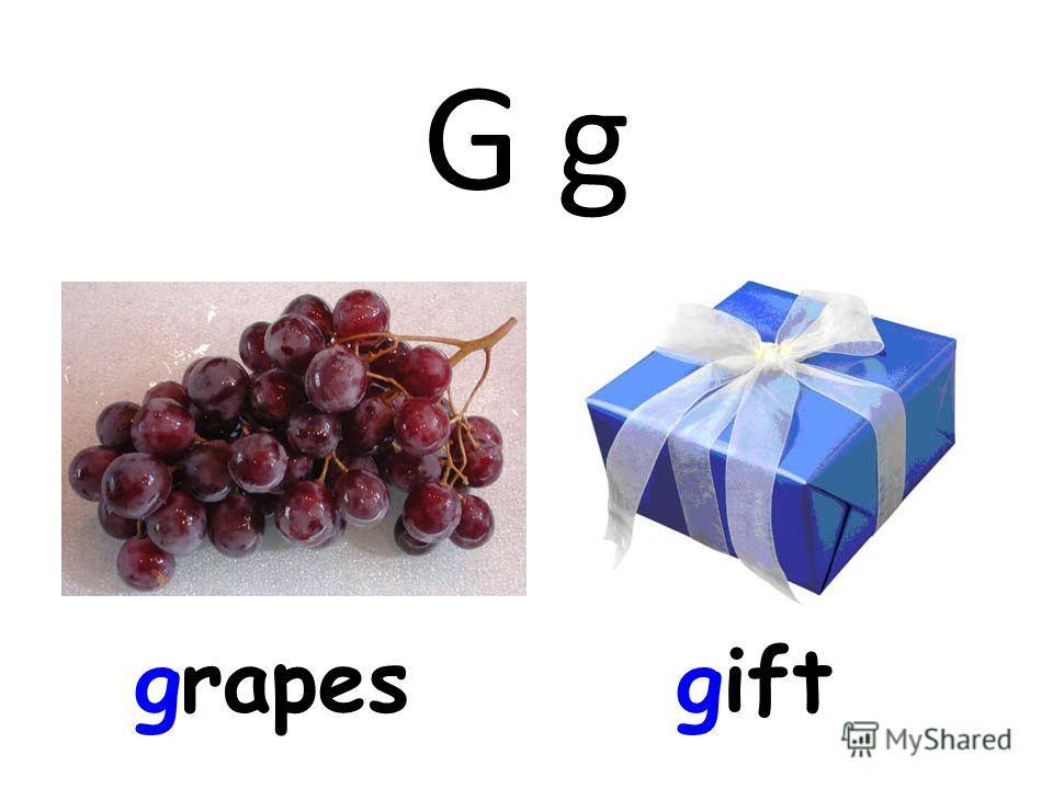 G g grapesgift