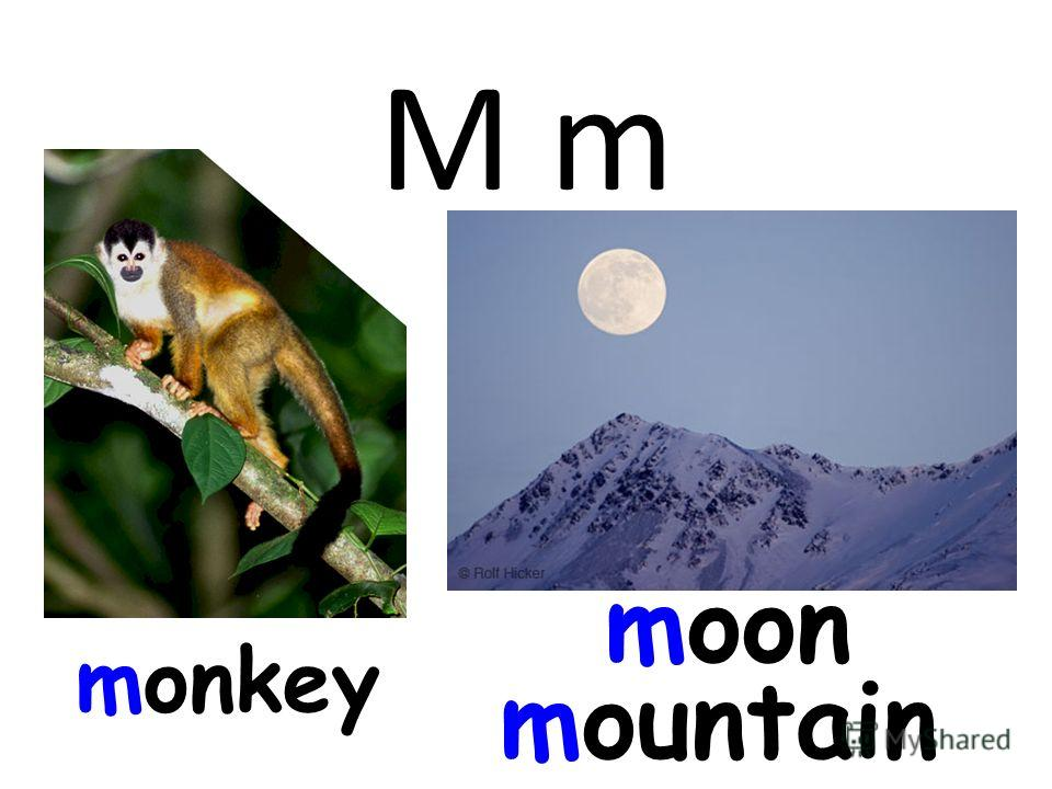 M m monkey moon mountain