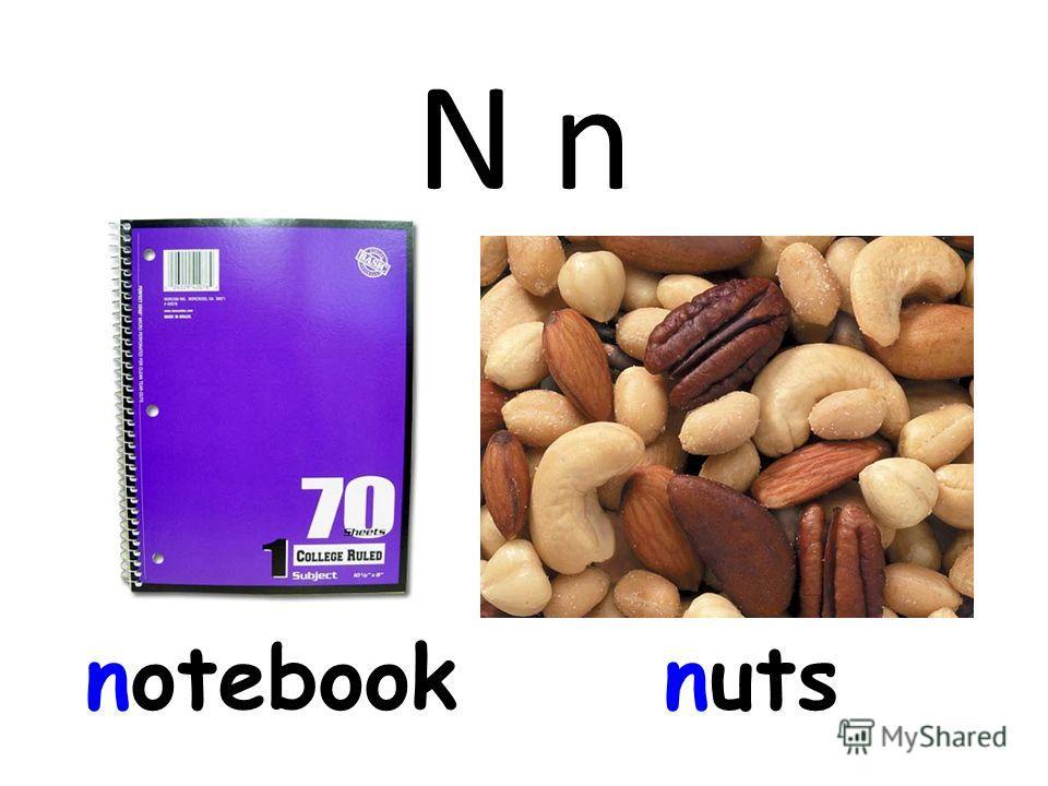 N n notebooknuts