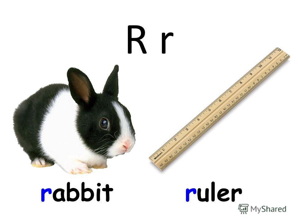 R r rabbitruler