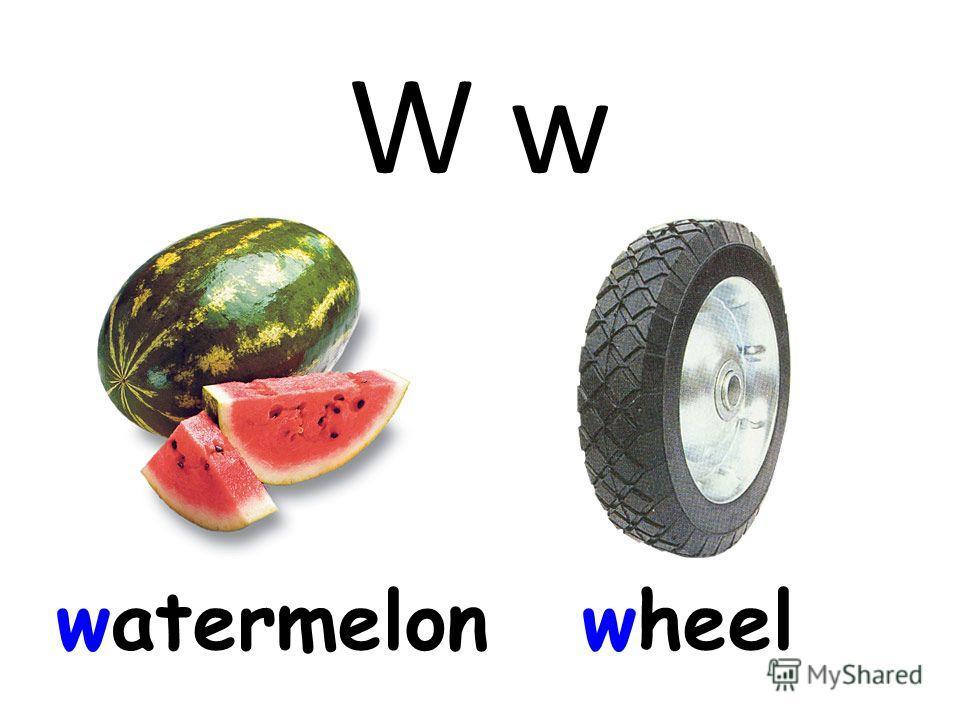 W w watermelonwheel
