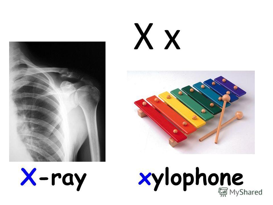 X x X-rayxylophone