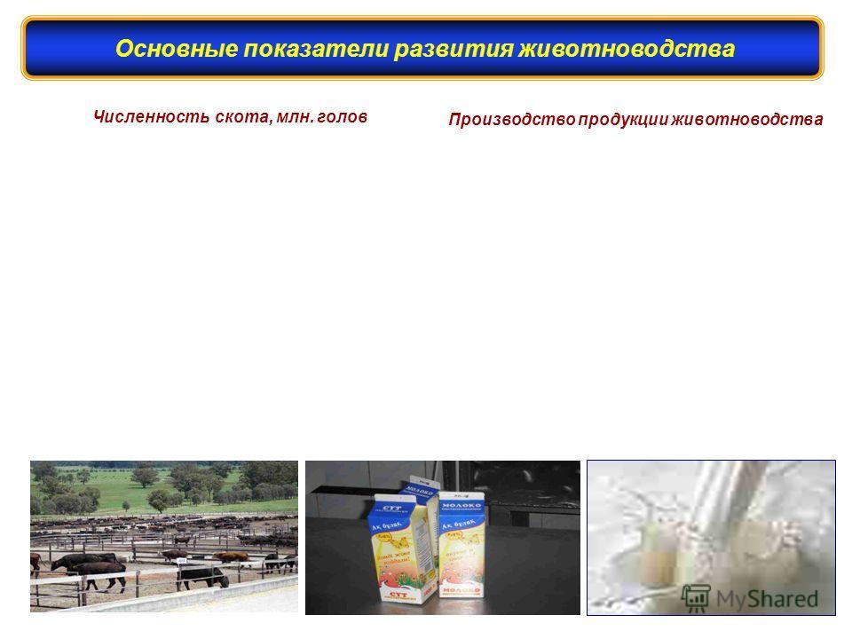 Численность скота, млн. голов Производство продукции животноводства Основные показатели развития животноводства